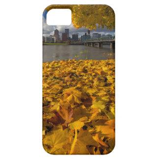Fall Foliage in Portland Oregon City iPhone 5 Cover
