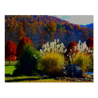 Fall Foliage in the Mountains Postcard