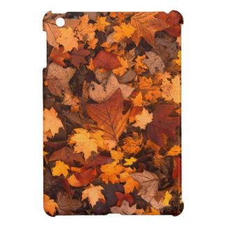Fall-foliage iPad Mini Covers