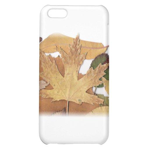 Fall Foliage Maple Leaf iPhone 5C Case