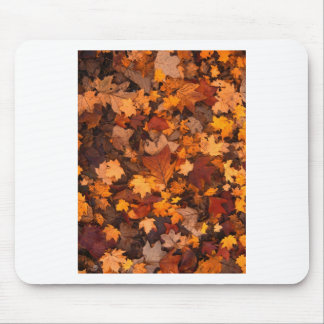 Fall-foliage Mouse Pad