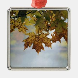 Fall Foliage Silver-Colored Square Ornament
