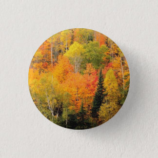Fall Foliage Valley 1 Inch Round Button