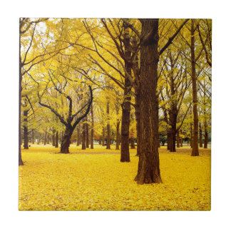 Fall forest scenery tile