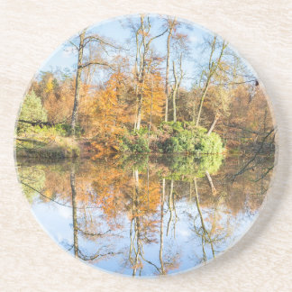 Fall forest with mirror image in water drink coasters