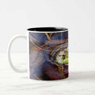 Fall Frog mug
