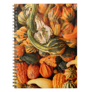 Fall Gourd Background Notebook