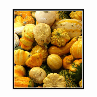 Fall Gourds Cut Out