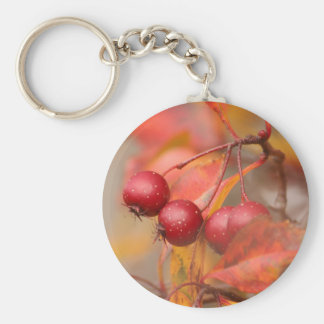 Fall Harvest keychain