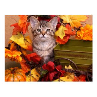Fall Harvest Postcard