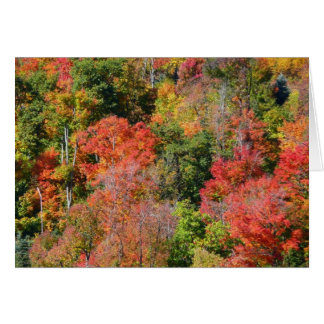 Fall Hillside Bright Autumn Colors Greeting Card