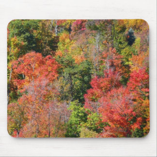Fall Hillside Bright Autumn Colors Mouse Pad