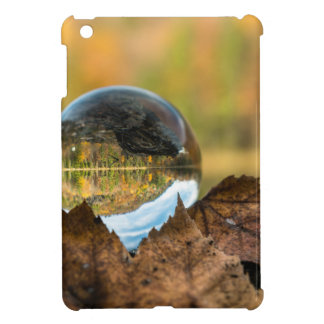 Fall in a ball iPad mini cover