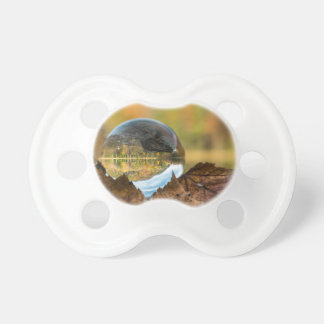 Fall in a ball pacifier