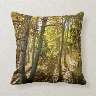 Fall in an aspen trees forest - fine art on canvas throw pillow