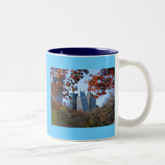 FALL IN CENTRAL PARK New York City mug