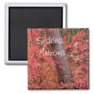 Fall in pink in Sedona, Arizona Magnet