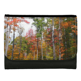 Fall in the Forest Colorful Autumn Photography Leather Wallet For Women
