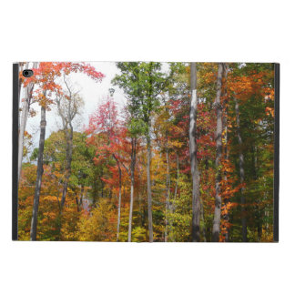 Fall in the Forest Colorful Autumn Photography Powis iPad Air 2 Case