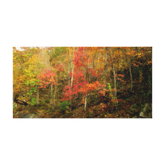 Fall In The Great Smoky Mountains Canvas Print