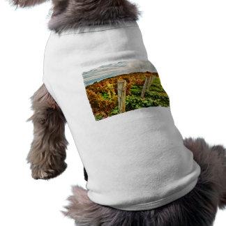 Fall in the Vineyard Sky Dog Tshirt