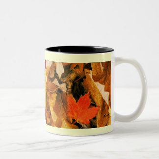 Fall into Autumn Leaves Mug