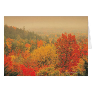 Fall landscape, New Hampshire, USA Card
