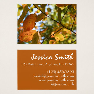 Fall Leaf Autumn Leaves Sky Nature Photography Business Card
