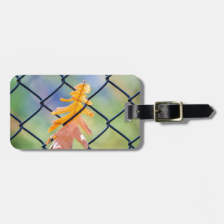 Fall Leaf Caught on a Fence Luggage Tag