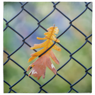 Fall Leaf Caught on a Fence Napkin