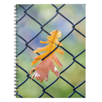 Fall Leaf Caught on a Fence Notebook