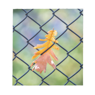 Fall Leaf Caught on a Fence Notepad
