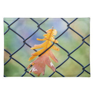 Fall Leaf Caught on a Fence Placemat