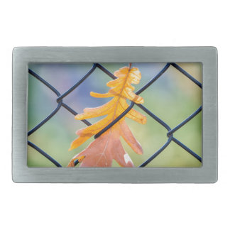Fall Leaf Caught on a Fence Rectangular Belt Buckle