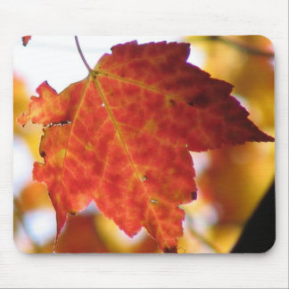 Fall Leaf Mouse Pad