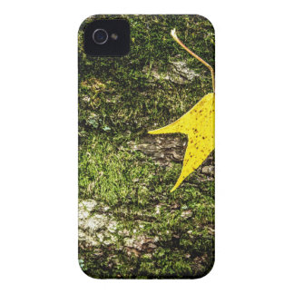 Fall Leaf on Moss iPhone 4 Cover