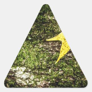 Fall Leaf on Moss Triangle Sticker