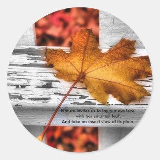 Fall Leaf Stickers