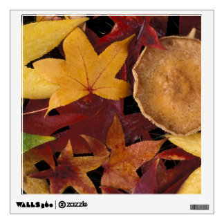 Fall leaves and toadstool wall sticker