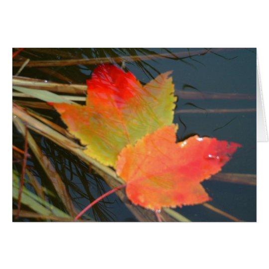 Fall Leaves - card