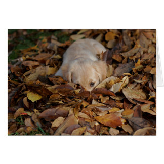Fall Leaves Golden Retriever Puppy Card