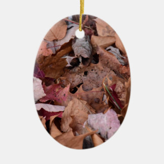 Fall leaves in the Smoky Mountains Ceramic Oval Ornament