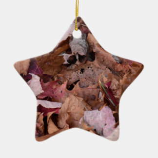 Fall leaves in the Smoky Mountains Ceramic Star Ornament