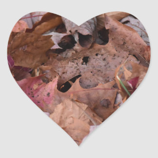 Fall leaves in the Smoky Mountains Heart Sticker