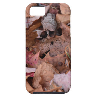 Fall leaves in the Smoky Mountains iPhone 5 Case