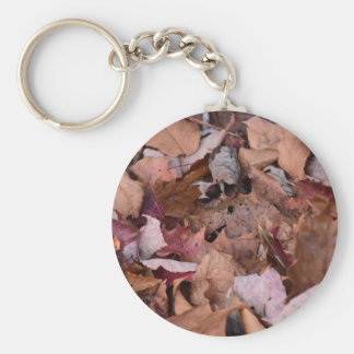 Fall leaves in the Smoky Mountains Keychain