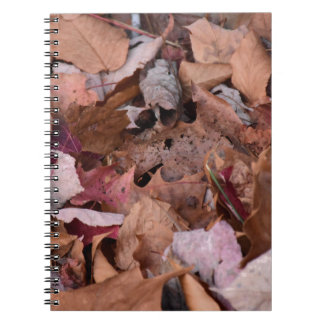 Fall leaves in the Smoky Mountains Notebook