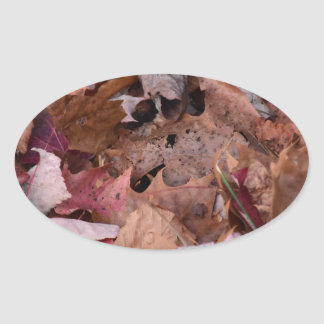 Fall leaves in the Smoky Mountains Oval Sticker