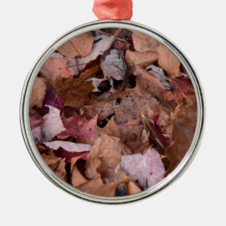 Fall leaves in the Smoky Mountains Silver-Colored Round Ornament