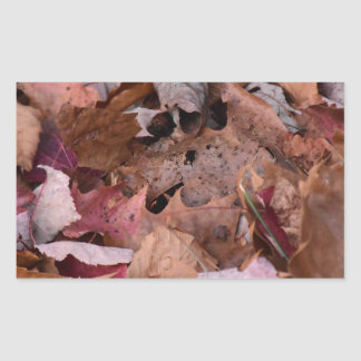 Fall leaves in the Smoky Mountains Sticker